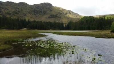 Harrop Tarn, Lake District
