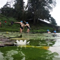 Loughrigg, Lakes and Lilies wild swim