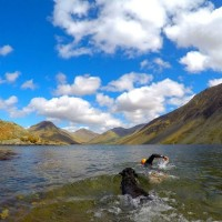Wastwater Adventure Swim