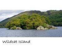 swim to wildcat island, Coniston